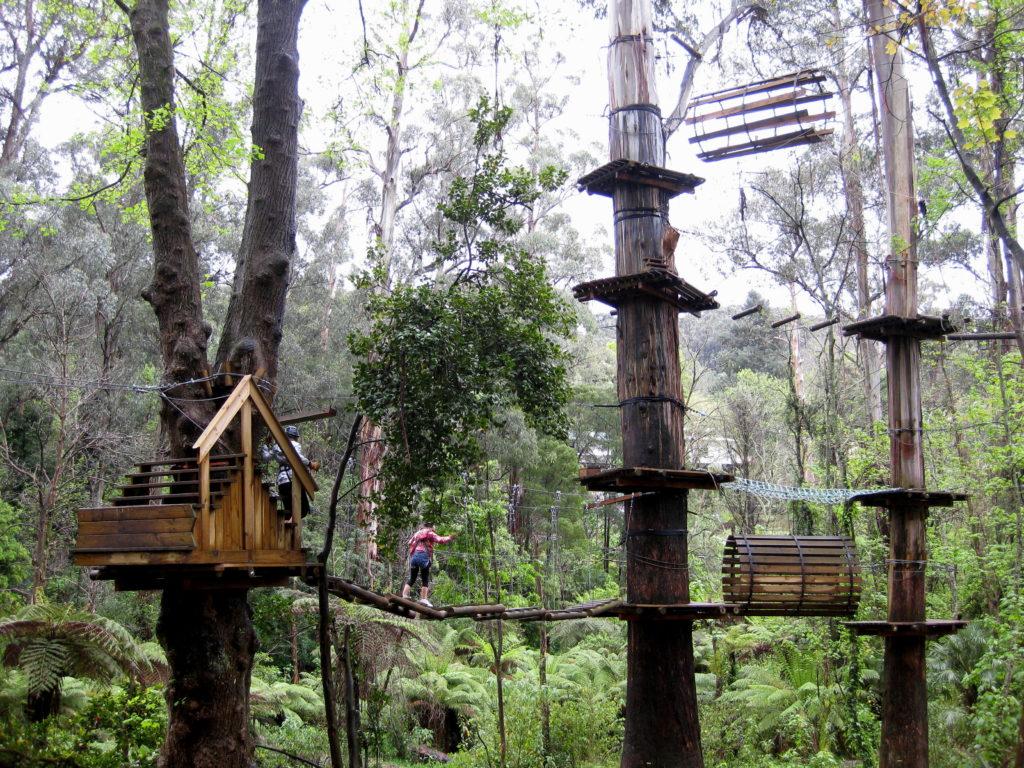 Trees Adventure, Belgrave